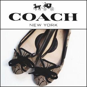 COACH Josie Ballet Flat w/ Lace Up Detail!
